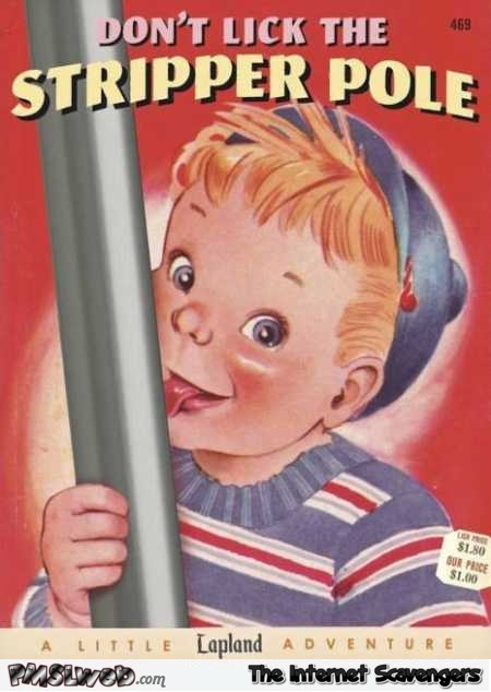 6-don-t-like-the-stripper-pole-funny-fake-book-cover.jpg