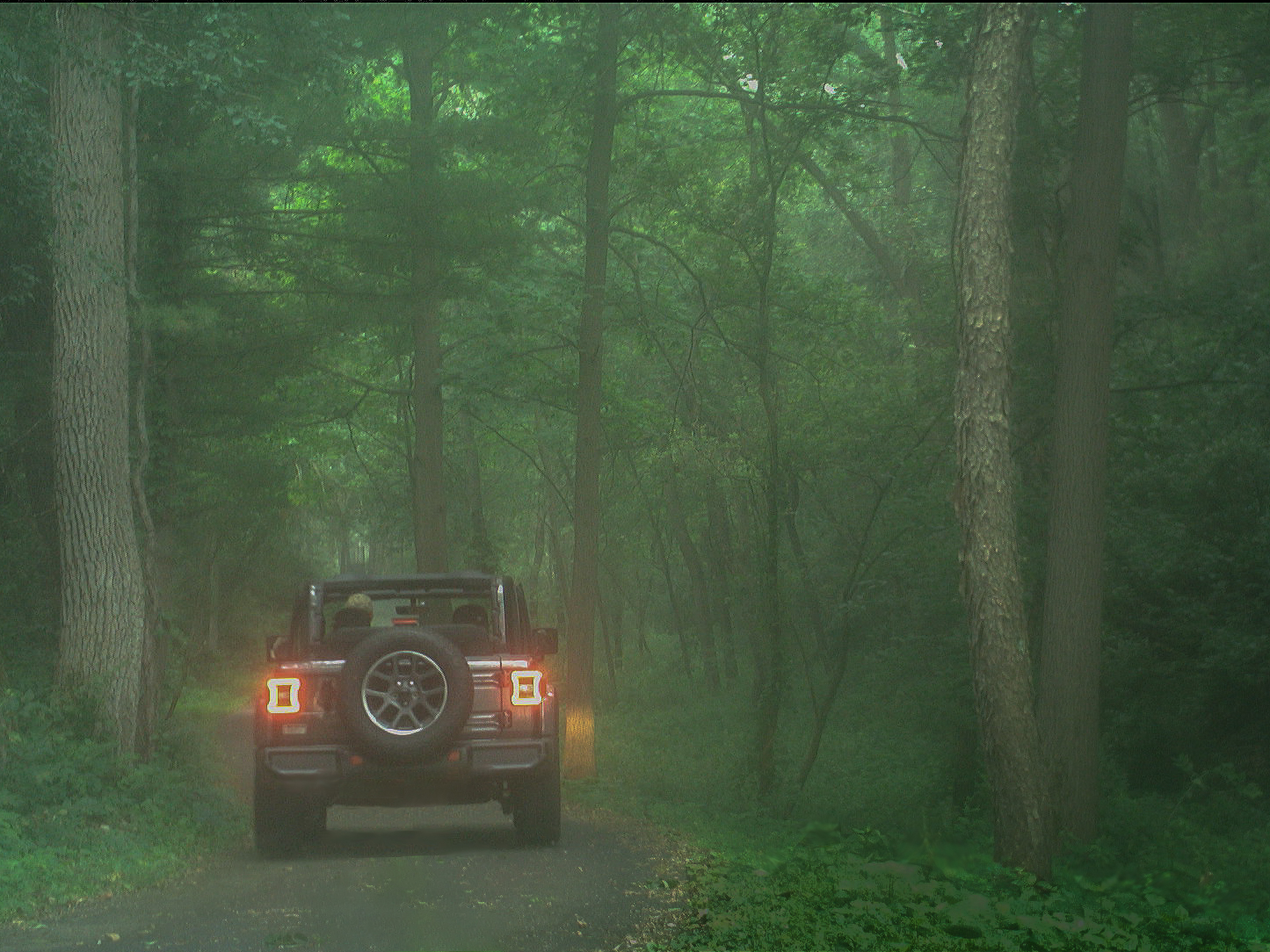 jeep in the driveway-5.jpg
