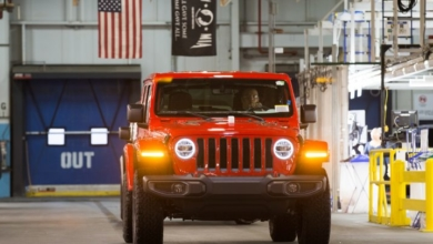 Jeep Wrangler May 2019 S Report